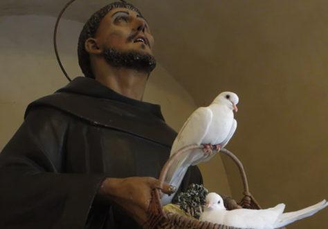 A paz na mística franciscana