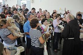 Fiéis levam animais para receber bênção em Blumenau