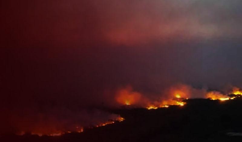 Mensagem sobre as queimadas: CNBB acompanha indignada a devastação e se solidariza com voluntários