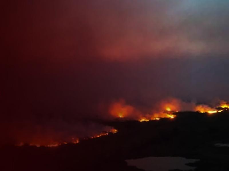 [Mensagem sobre as queimadas: CNBB acompanha indignada a devastação e se solidariza com voluntários]