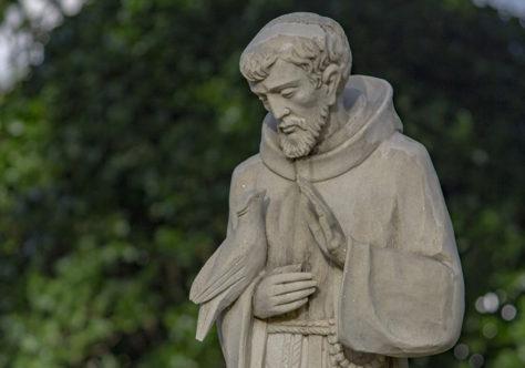 Venha ser frade franciscano! Fale conosco!