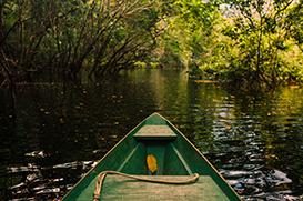 A Amazônia: nem selvagem nem pulmão nem celeiro do mundo