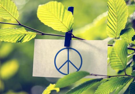Mensagem do Papa Francisco para o Dia Mundial da Paz - 1º de janeiro de 2020