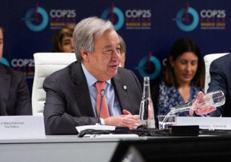 COP-25: A nossa guerra contra a natureza deve parar