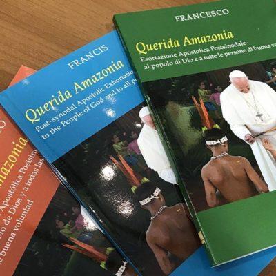 """""""Querida Amazônia"""": uma inculturação truncada"""