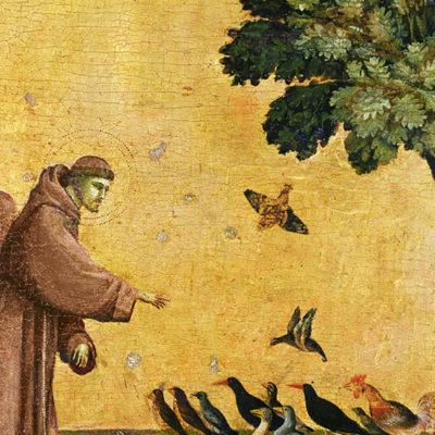 Uma leitura de cego da encíclica ecológica Laudato Si'
