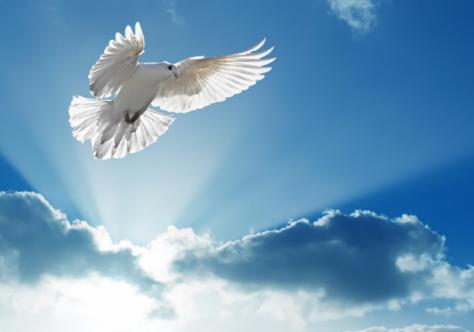 Pentecostes: vem Espírito de vida e salva-nos!