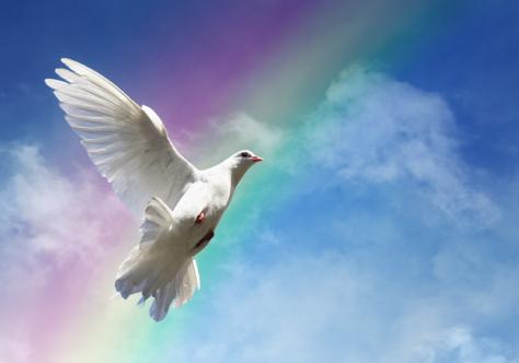 Mensagem do Santo Padre para o 54º Dia Mundial da Paz