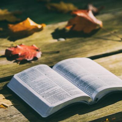 Durante o isolamento social: o que ler e como ler (I)