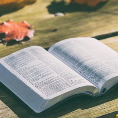 Sete pontos e dois movimentos para interpretar a Bíblia