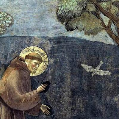 São Francisco de Assis e a conversão ecológica