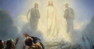 transfigura_010817_p