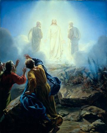 transfigura_060818